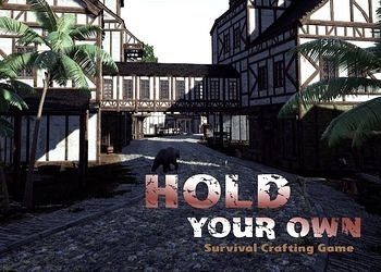 Обложка игры Hold Your Own