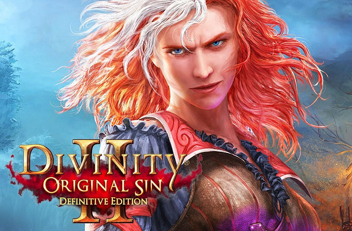 Обложка игры Divinity: Original Sin 2 - Definitive Edition