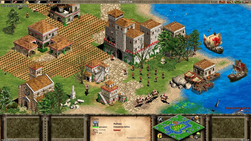 Скриншот Age of Empires 2: Forgotten Empires под номером 5