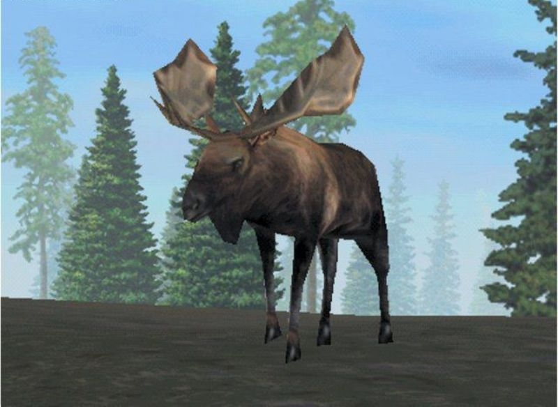 Download Rocky Mountain Trophy Hunter 3 Trophies of the West (Windows)