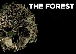 ������� � ���� Forest, The